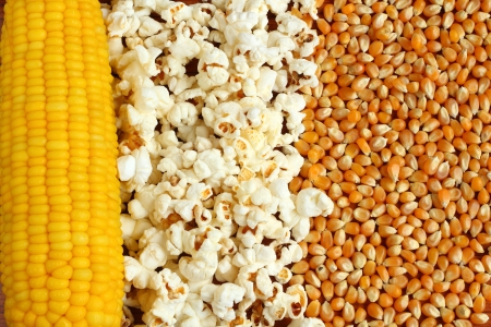 Popcorn kernels and sweetcorn Stock Photo