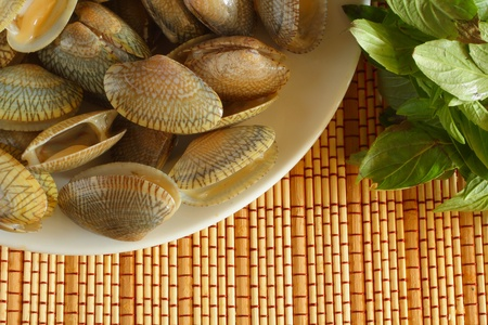 Shellfish on wood background