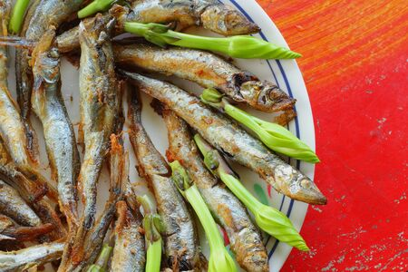 moonflower: Capelin and moonflower Stock Photo