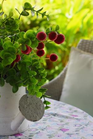 arroser plantes: L'arrosage des plantes Banque d'images