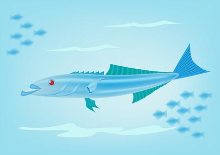 Cobia fish Stock Vector - 16865781