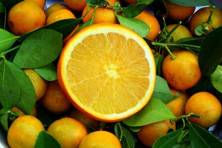 Orange background Stock Photo - 16903530
