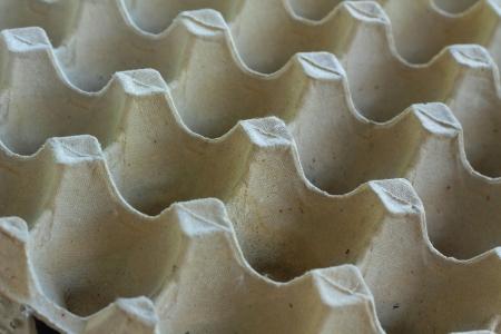 molded: Molded pulp egg tray