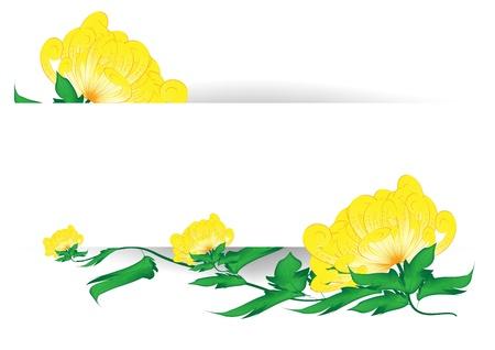 Chrysanthemum flowers - card Stock Vector - 17818030