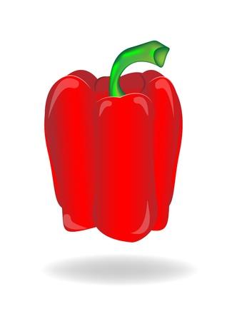 bell pepper: Bell pepper on white background  Illustration