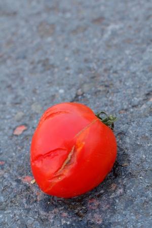 Rotten tomato  Stock Photo - 18671469