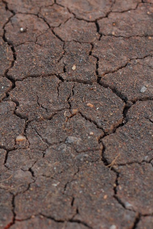 Brown chapped soil background photo