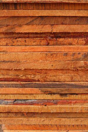 pile of cut wood stump Stock Photo - 19595708