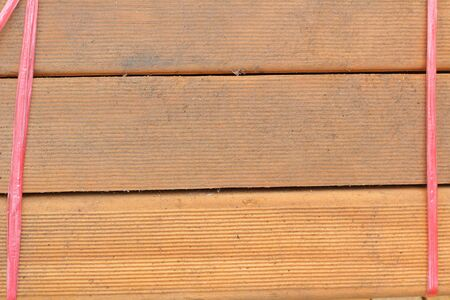 pile of cut wood stump Stock Photo - 19595726