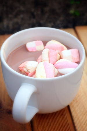 marshmellow: Hot chocolate and pink marshmallows