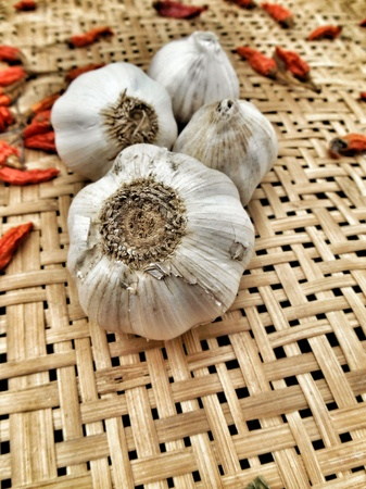 Garlic and chili on the wood background photo