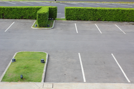 Parking lot and  green tree photo