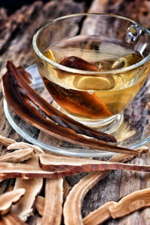 Ganoderma lucidum und Tee-Tasse Standard-Bild