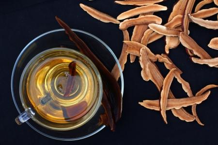 Ganoderma lucidum et une tasse de thé Banque d'images - 22884908