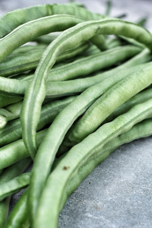 long bean: long bean on gray background