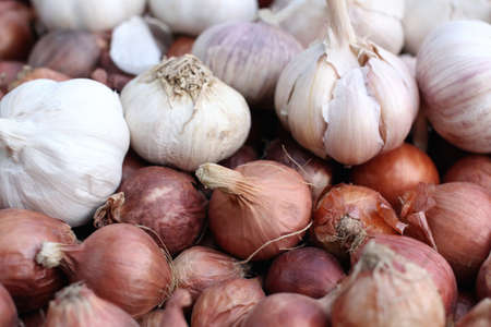 red onion: Shallot - asia red onion