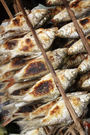 BBQ fish in the market photo