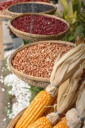 legumes red bean,black bean, green bean, peanuts, dried cob corn photo