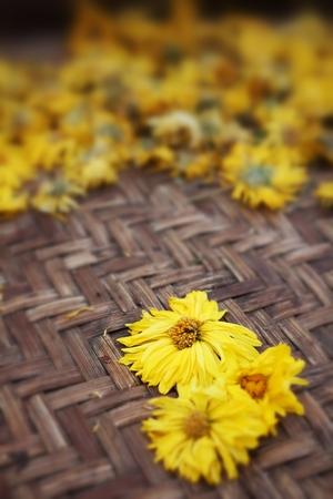 Chrysanthemum tea on the wood background