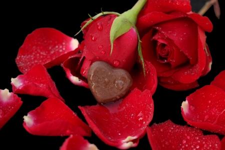 Gros plan sur le coeur de chocolat et rose rouge Banque d'images - 25145571