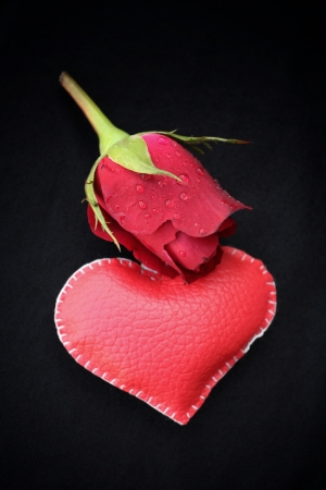leather  heart with red roses for valentine day