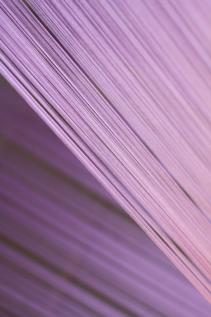 Closeup of weaving thread for the textile industry Standard-Bild