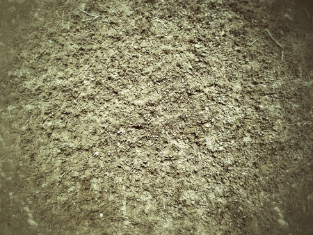 vintage gray background texture photo