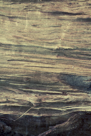 Old wood  photo