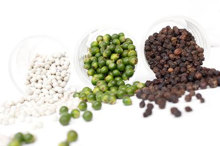 black pepper: Fresh pepper isolated - peppercorn
