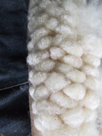 cotton on jeans Stock Photo