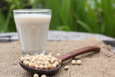 Le lait de soja avec des haricots Banque d'images - 31233313
