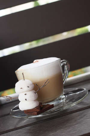 Hot chocolate with marshmallow  photo