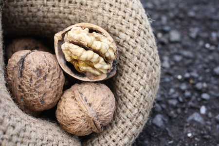 Walnuts Imagens