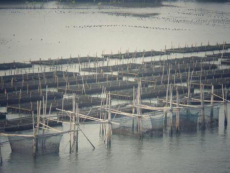 fischerei: Shell Landwirtschaft - Fischerei im Meer Lizenzfreie Bilder
