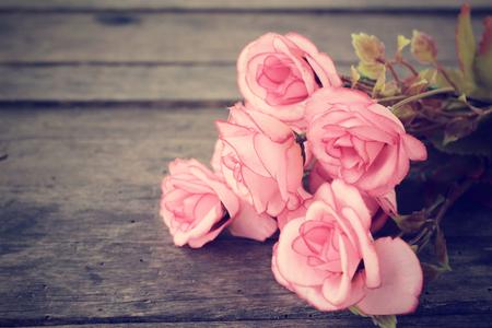 jardines con flores: Rosas Vintage Foto de archivo