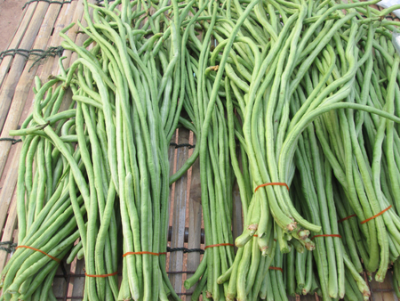 long bean: Long bean Stock Photo