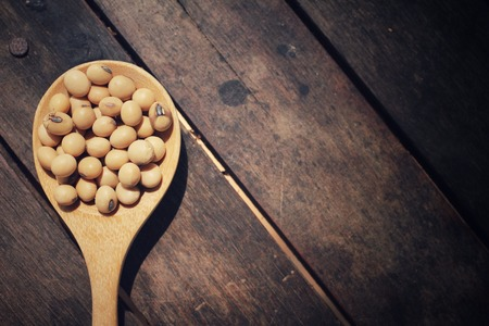 soja: Los frijoles de soya