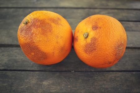 rotten fruit: Rotten orange fruit Stock Photo