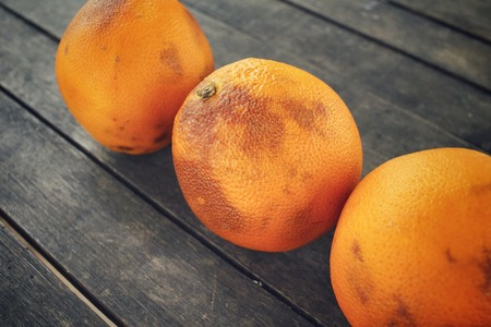 spoilage: Rotten orange fruit Stock Photo