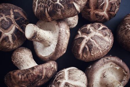 shiitake: Shiitake mushrooms Stock Photo