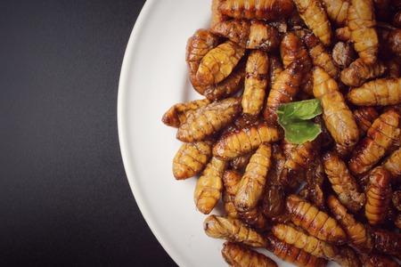 pupae: Silkworm pupae