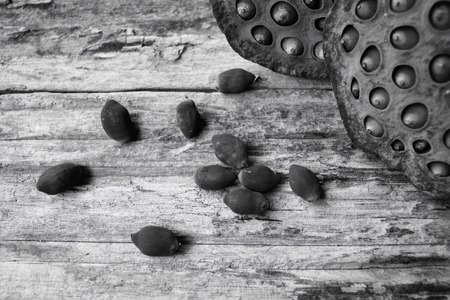 seedpod: Dried lotus seeds
