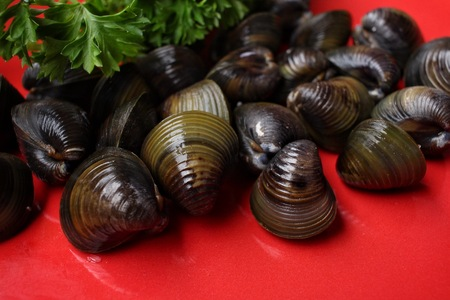 clams: Raw clams.