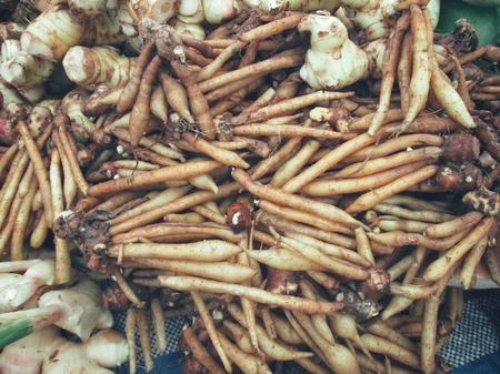ginseng roots: Fingerroot herb in asia Stock Photo