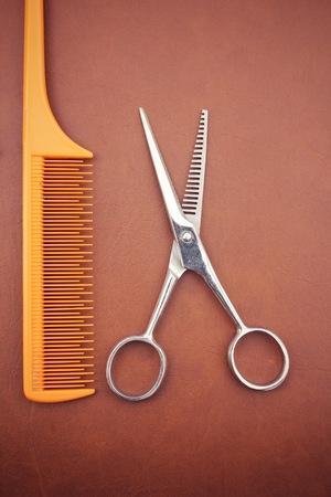 shears: Hair cutting shears and comb