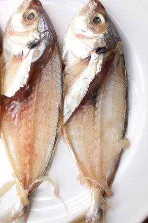 bone fish: Fish bone