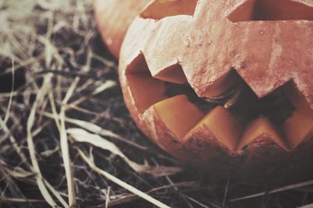Halloween pompoen Stockfoto