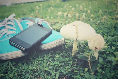 dirty feet: Sneakers and smart phone with mushrooms on grass