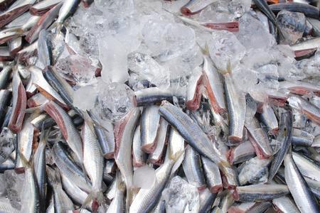 fishy: Fresh fish at asia market Stock Photo