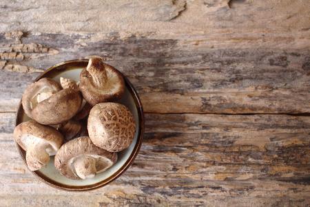 shiitake: Shiitake mushroom Stock Photo